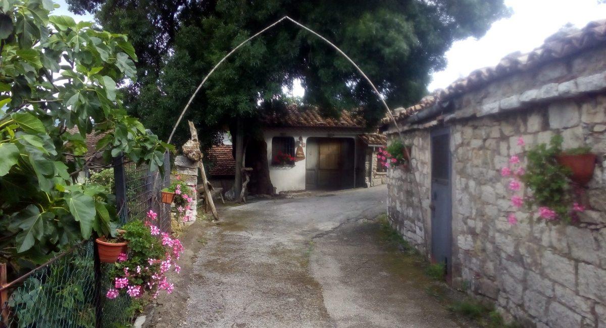 Borgo 22
