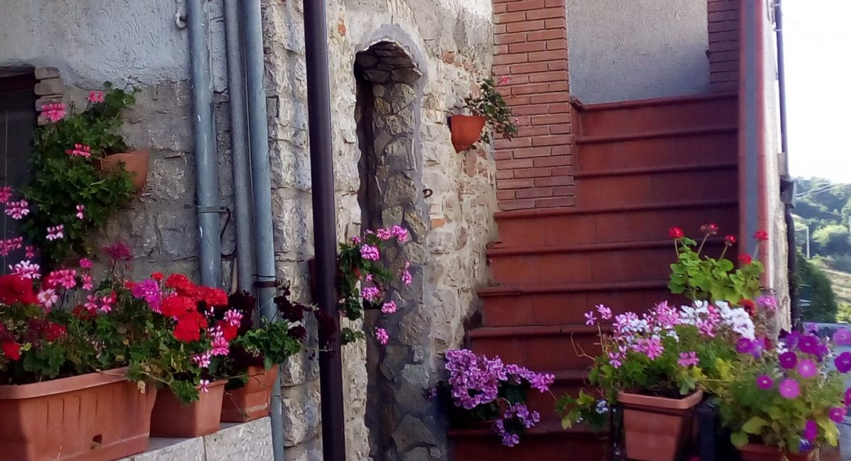 Borgo 25