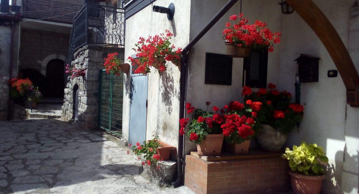 Composizione di fiori 12
