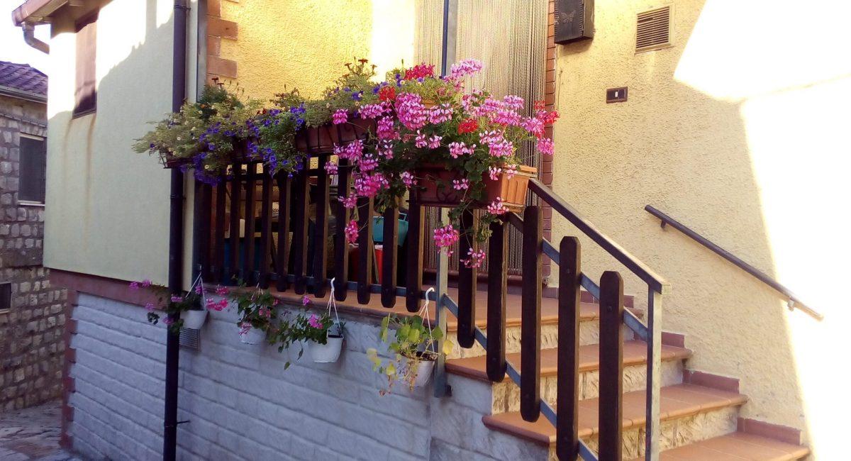 Composizioni di fiori nel Borgo